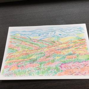 花見山公園  〔福島〕