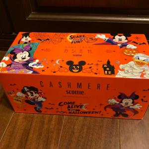 ハロウィンのBOXティッシュ!