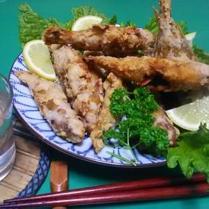 青ギザミ釣って唐揚げや煮魚料理にした。