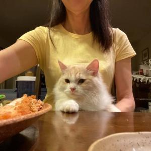 ママのお膝でお食事タイム