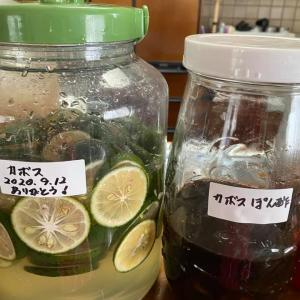 自然農法のカボスで発酵エキスとポン酢を作りました。