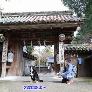 吉水神社に行ってきたよ♪