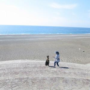 GW最終日【その2 七里御浜海岸】