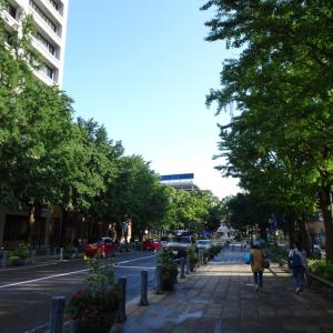 「願い。」【7/26横浜】横浜DeNA6-10広島