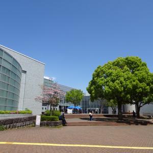 「SLAM DUNK」【4/18平塚総合体育館-平塚最終戦-】横浜71-85SR渋谷