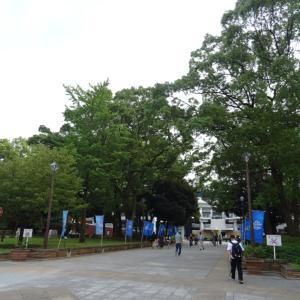 「まだまだ、」【8/27横浜】横浜DeNA5-3東京ヤクルト