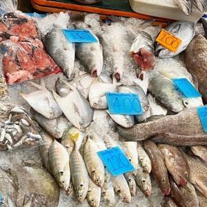 【男の料理】タイの魚で、ココナッツカレーを作ってみる