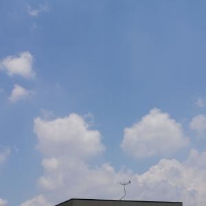 お空を見て気分もアップ