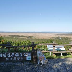 2020 北海道 3-1(釧路湿原)