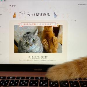 『ペット関連商品』TOP画面