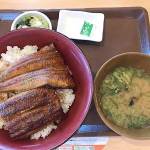 すき家@うな丼1,380円
