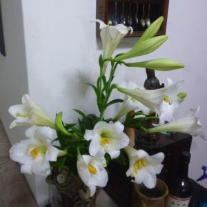 2012年東南アジア旅行の記憶