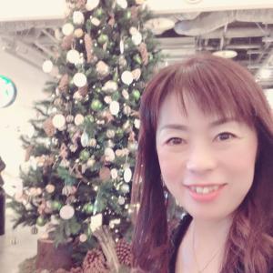 クリスマスツリーが素敵なカフェ
