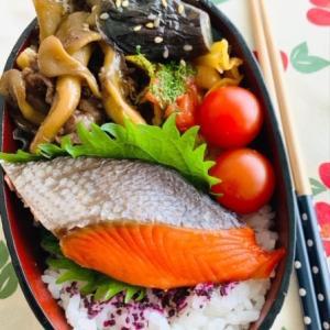 焼き鮭の和弁当(MY弁当)