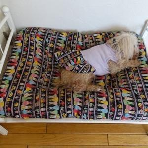 りんのベッド