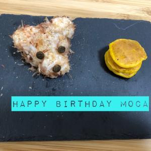 モカの誕生日♪