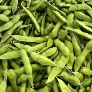 枝豆農家最終日?