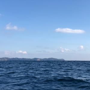 熱海でカワハギ釣り