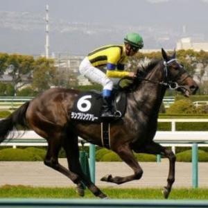 競馬 愛知杯予想(2021)