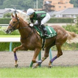 競馬 中山記念&阪急杯の予想(2021)