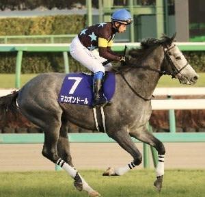 競馬 京都新聞杯&プリンシパルSの予想(2021)