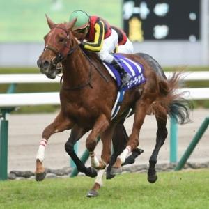 競馬 ヴィクトリアマイル予想(2019)