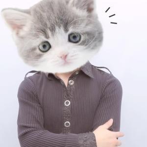 吾輩は猫である。