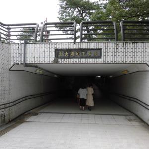 ☆ 東大寺へ