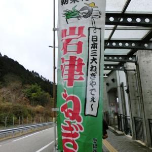 ☆ 岩津ネギ