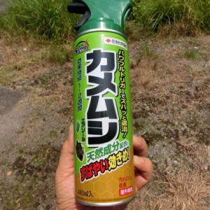 ∞ 楽園トピックス2020-33・・・・・カメムシ殺虫