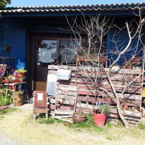 「GARDEN&雑貨&CAFE 自宅shop ohana」のランチは美味しい♪
