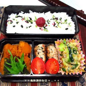 *メリ☆食* ヘルシー豆腐ハンバーグで二段弁当