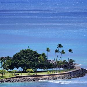 自主隔離2日目 日本は後回しになっちゃったハワイ・リオープン