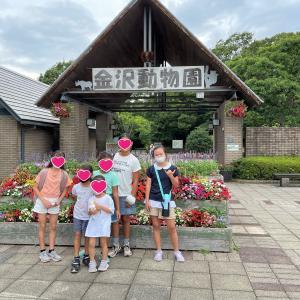 ハワイっ子たちの夏休み in Japan