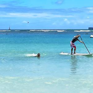 アラモアナビーチピックニックとSUP