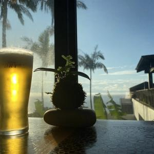 屋久島の旅15〜サンカラホテルの朝食とカレー〜