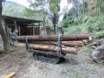 伐採・集材