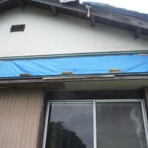 屋根、壁、テラス ~ 外壁補修。
