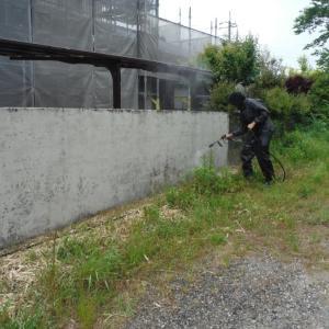 外壁塗替えとメンテナンス。 ~  水洗い終了。