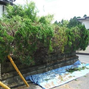 植木、ポスト、トイレ、テラス屋根まとめて工事 ~ 植木伐採、刈り込み。