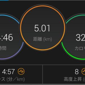 東京マラソンに向けて走ってます。