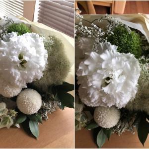 「BOOM」の花