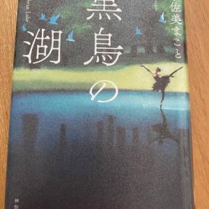 「黒鳥の湖」宇佐美まこと著