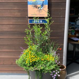 軽井沢 カフェの朝食とピッツァ