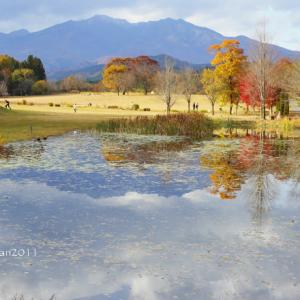 日光そばまつり2019 in 日光だいや川公園