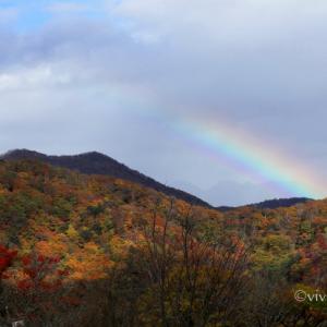 日光 10月の特別撮影会 ~霧降高原の紅葉は今が見頃~