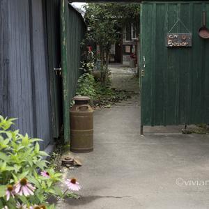 栃木市 カフェ バザール(cafe Bazzar) ~定番のラザニアランチ~