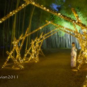若竹の杜 若山農場 ~竹とあかりとジャズの饗宴~