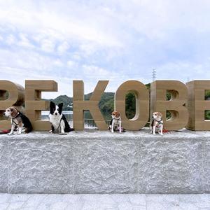 6月5日 神戸のアレ3つ目!!(@つくはら大橋休憩所 BE KOBEモニュメント)