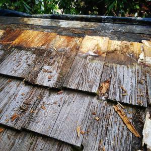 小屋の屋根をふき替えています③!